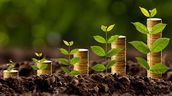 A importância da Bioeconomia