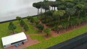 Maquete da BioTec-Amazônia apresenta Sistema Agroflorestal (SAF)